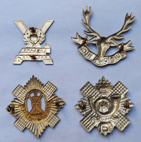 collection-of-scottish-badges-2
