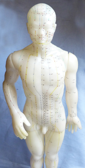 vintage-acupuncture-doll-2
