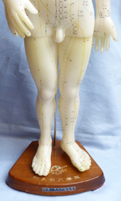 vintage-acupuncture-doll-3