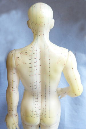 vintage-acupuncture-doll-8